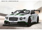 Rastar 1/14 Bentley Continental GT3 Electric Series RC Racing Car